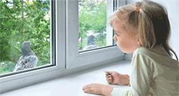 Как вернуть деньги за окна в экопласте